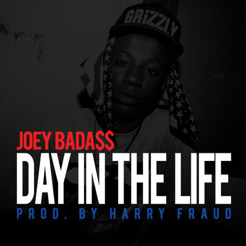 joey-badaSS-harry-fraud